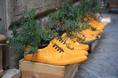 Pflanzt eingemachtes in den gelben Schuhen Lizenzfreies Stockbild