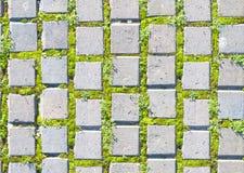 Pflastersteinart mit nahtlosem Muster des Grases Stockfotos