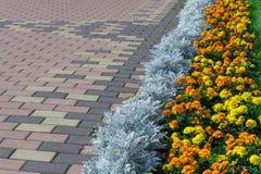 Pflasterung des Musters mit rechteckiger Form und brauner Farbe Lizenzfreies Stockfoto