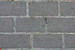 Pflasterung gemacht von den grauen Fliesen Stockfotos