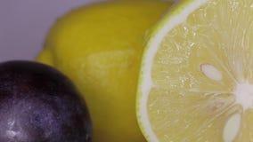 Pflaume, Zitrone und Wassertropfen stock video footage