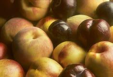 Pflaumen, Nektarinen und Pfirsiche häuften zusammen an Lizenzfreies Stockfoto