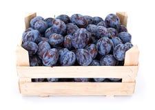 Pflaumen (Prunus) in der hölzernen Kiste Stockbilder