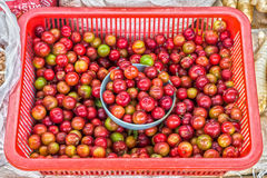 Pflaumen sind im Plastikkorb im thailändischen Frischmarkt Lizenzfreies Stockfoto