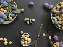 Pflaumen und Mirabellen auf keramische Platten auf dem schwarzen Hintergrund stockfotografie
