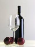 Pflaumen und Wein   Lizenzfreies Stockbild