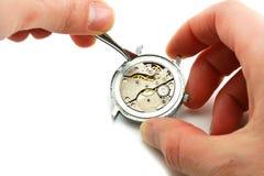 Pflege des Uhrwerks Stockfotos