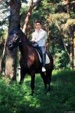 Pflegen Sie die Aufstellung auf einem Pferd im Wald stockfotografie