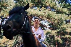 Pflegen Sie die Aufstellung auf einem Pferd im Wald stockbilder