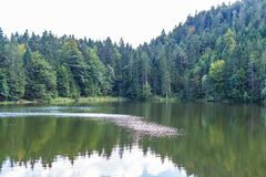 The Pflegersee in the Bavarian Alps royalty free stock image