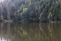 The Pflegersee in the Bavarian Alps royalty free stock photography