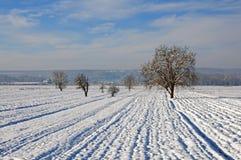 Pflug unter Schnee Stockfotos