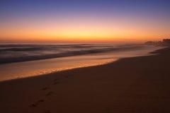 Pfotenabdrücke auf dem Strand Stockfotos