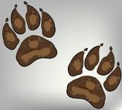Pfotenabdruck auf Hunden Stockbild