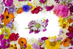 pfoto kwiecisty ramowy obrazek Obrazy Royalty Free