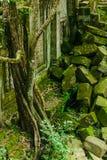 Pfropfen Mealea-Schloss, Khmer-K?nigreich stockfotografie