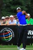 PGA前高尔夫球运动员老虎伍兹 库存照片