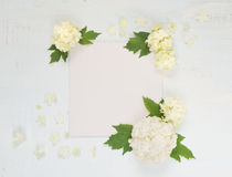 Página de Scrapbooking con las flores blancas Foto de archivo libre de regalías