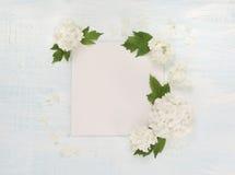 Página de Scrapbooking con las flores blancas Fotografía de archivo libre de regalías