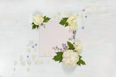 Página del libro de recuerdos con las flores blancas y azules Foto de archivo libre de regalías