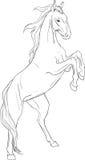 Página que colorea con el caballo Fotos de archivo