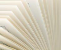 Páginas de um livro 4 Fotografia de Stock Royalty Free