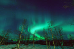 Phénomène Aurora Borealis de lumières du nord image libre de droits