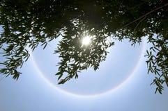 Phénomène de halo de Sun Photographie stock libre de droits