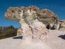 Phénomène en pierre naturel de zéolite Les champignons de pierre Images stock
