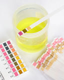 PH analysis of specimen Stock Images