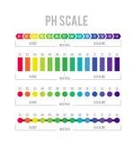 PH meter om zuur alkalisch saldo te meten Vectorinfographics in de cirkelvorm met pH schaal royalty-vrije illustratie