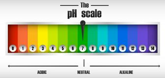 The ph scale diagram stock illustration