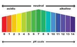 The pH scale value ,  isolated Royalty Free Stock Photo