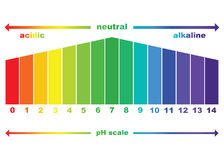 PH scale value ,  isolated.  Royalty Free Stock Photos