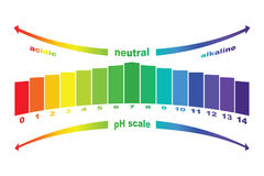 PH scale value ,   isolated . Royalty Free Stock Images