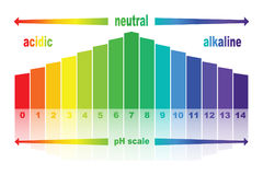 PH scale value ,   isolated . Stock Photo