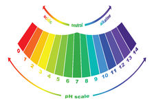 The pH scale value , vector   Royalty Free Stock Photos