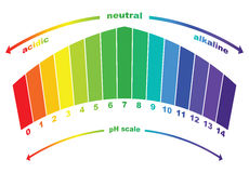 PH scale value , vector isolated . Royalty Free Stock Images