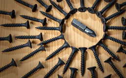 PH screwdriver amongst the many screws Stock Image