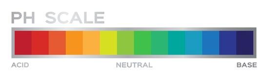 Ph skala grafika kwas opierać się ilustracja wektor