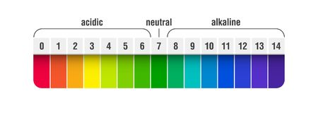 PH value scale chart. For acid and alkaline solutions, acid-base balance infographic royalty free illustration