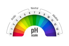 PH value scale chart. For acid and alkaline solutions, acid-base balance infographic vector illustration
