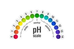 PH wartości skala mapa ilustracja wektor