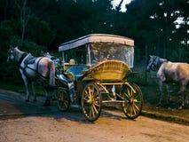 phaéton Chariot de cheval image stock