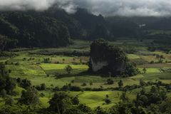 Pha Chang Noi, национальный парк Phu Langka, Phayao, Таиланд Стоковые Фотографии RF
