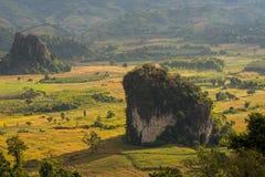 Pha Chang Noi klippa på Phu Langa Arkivbild