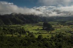 Pha Chang Noi, Phu Langka park narodowy, Phayao, Tajlandia Zdjęcia Stock