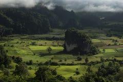 Pha Chang Noi, Phu Langka park narodowy, Phayao, Tajlandia Zdjęcia Royalty Free