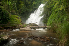 Pha Duak Saew waterfall in forest. Stock Image