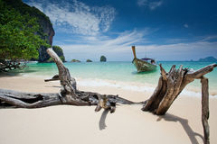 Pha nang beach Royalty Free Stock Image